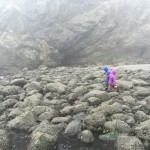 Jessica and Brandon traversing the rocks at the tide pools