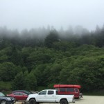 The mist is low at our parking lot near Fern Canyon